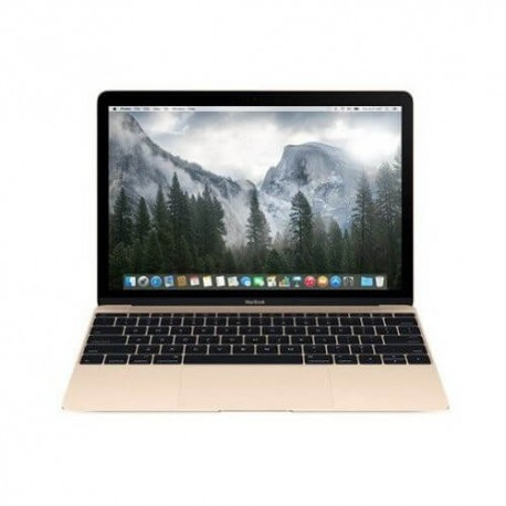 Apple MacBook MK4N2ID/A