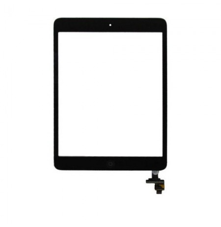 iPad Mini Digitizer
